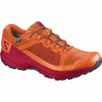 Salomon XA ELEVATE GTX® Scarpe Trail Running Uomo (373FBTXD)