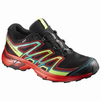 Salomon WINGS FLYTE 2 GTX® Scarpe Trail Running Uomo (521NCRHA)