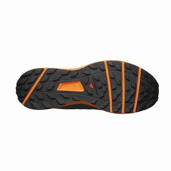 Salomon SENSE RIDE Scarpe Trail Running Uomo (958VWSUL)