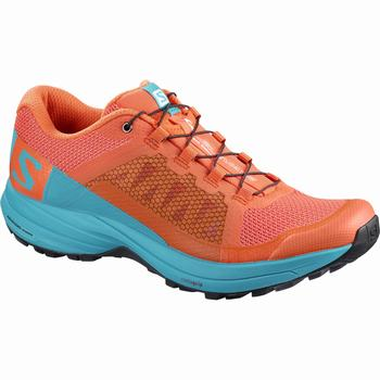 Salomon XA ELEVATE W Scarpe Trail Running (719NSJBK)