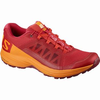 Salomon XA ELEVATE Scarpe Trail Running Uomo (368YUVXT)