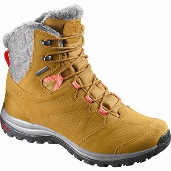 Scarpe Invernali Donna Salomon ELLIPSE WINTER GTX® (842OGYAC)