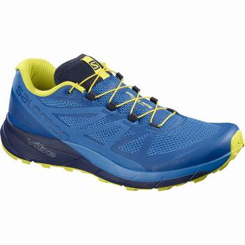 Salomon SENSE RIDE Scarpe Trail Running Uomo (468UGKYP)