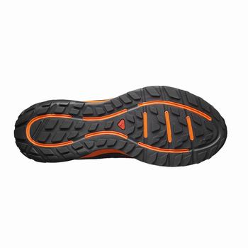 Salomon SENSE ESCAPE Scarpe Trail Running Uomo (986ODLIE)
