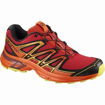 Salomon WINGS FLYTE 2 Scarpe Trail Running Uomo (555FIBNK)