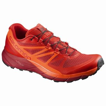 Salomon SENSE RIDE Scarpe Trail Running Uomo (936PSQZW)