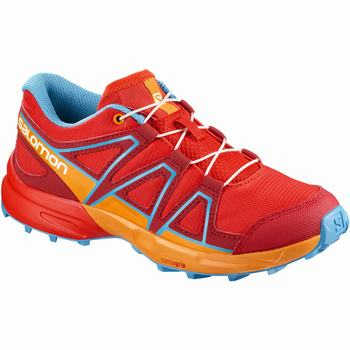 Scarpe Trail Running Bambino Salomon SPEEDCROSS J (978WCEGR)
