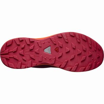 Salomon XA ELEVATE GTX® W Scarpe Trail Running (697RWANQ)